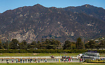 November 2, 2019: Belvoir Bay, ridden by Javier Castellano, wins the Breeders' Cup Turf Sprint on Breeders' Cup World Championship Saturday at Santa Anita Park on November 2, 2019: in Arcadia, California. Kaz Ishida/Eclipse Sportswire/CSM
