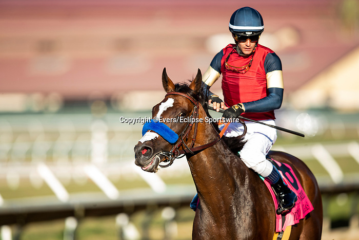 SEPTEMBER 04 2021:  Going To Vegas with Flavien Prat wins the John C Mabee at Del Mar Fairgrounds in Del Mar, California on September 04, 2021. Evers/Eclipse Sportswire/CSM