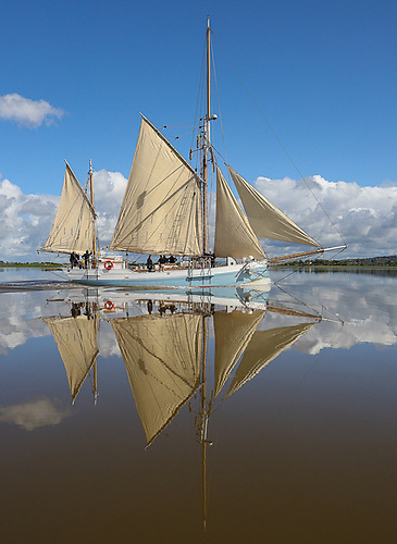 A pet day and reflections galore….Ilen approaching Limerick from Foynes in the morning calm