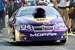 Vincent Nobile (154) driver for the Mountainview Tire team makes a pass during the O'Reilly Auto Parts Spring Nationals at the Royal Purple Raceway in Baytown,Texas.