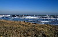 Europe/France/Normandie/Basse-Normandie/50/Manche/Utah-Beach: La plage du débarquement allié du 6 juin 1944