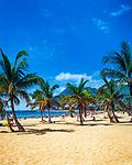 Spanien, Kanarische Inseln, Teneriffa, San Andres: Playa de las Teresitas | Spain, Canary Islands, Tenerife, San Andres: Playa de las Teresitas