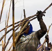 Sugarcane cutters, Sao Paulo State, Brazil. Biofuel, Sao Manoel ethanol and sugar plant. May 2008.