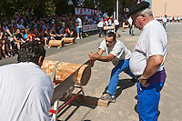 Europe/France/Aquitaine/64/Pyrénées-Atlantiques/Pays-Basque/Saint-Palais: Festival de force basque, Les bucherons-scieurs [Non destiné à un usage publicitaire - Not intended for an advertising use]