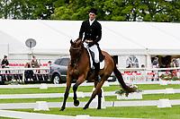 NZL-Andy Daines (SPRING PANORAMA) - 2012 IRL-Tattersalls International Horse Trial: Friday - Dressage: CCI**-U25 - INTERIM: 16TH