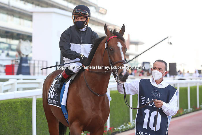 March 27, 2021: TRUE VALOUR (IRE) #10 in the post parade for the Al Quoz sprint on Dubai World Cup Day, Meydan Racecourse, Dubai, UAE. Shamela Hanley/Eclipse Sportswire/CSM