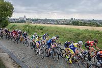 Peloton up the cobbles of Kautershof in Hoegaarden<br /> <br /> 2nd Dwars door het Hageland 2017 (UCI 1.1)<br /> Aarschot > Diest : 193km