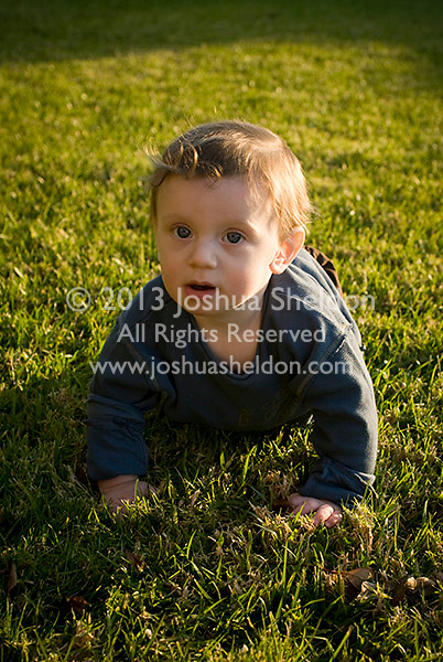 Baby boy crawling across grass towards camera