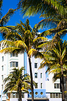 Colorful Ocean Drive Art Deco building under a blue sky, with Lummus Park palm trees in the foreground, in Miami Beach, Florida USA