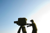 A hedge trimmed to look like a tv camera and cameraman at Wimbledon, The All England Lawn Tennis Club (AELTC), London...