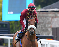 Iron Heart ridden by Oisin Murphy goes down to the start  of The Kevin Hall & Pat Boakes Memorial Handicap    during Horse Racing at Salisbury Racecourse on 13th August 2020