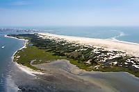 Assateague Island MD Maryland Beach