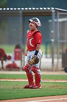 St. Louis Cardinals catcher Joshua Lopez (10) during a Minor League Spring Training intrasquad game on March 31, 2016 at Roger Dean Sports Complex in Jupiter, Florida.  (Mike Janes/Four Seam Images)