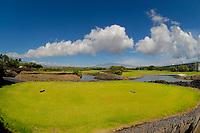 Mauna Lani resort North golf course, championship tee, 10th tee, Mauna Kea volcano in the distance, The Fairmont Orchid Hawaii Resort area, The Big Island of Hawaii