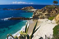 Beautiful, white sand Treasure Island beach, lush vegetation, turquoise Pacific Ocean, and western gulls on the rocks, in Laguna Beach, California USA