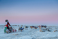 Aliy Zirkle runs on the trail toward the Bering Sea just a few miles before the finish  in Nome for a third place finish on Tuesday March 15th during the 2016 Iditarod.  Alaska    <br /> <br /> Photo by Jeff Schultz (C) 2016  ALL RIGHTS RESERVED