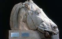 Greek Art:  Parthenon Sculptures, East Pediment  0--Head of one of Selene's chariot-horses.  Trustees fo the British Museum.