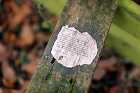 Pictured: A wooden step on a fence post Friday 02 December 2016<br /> The Sidney Nolan Trust, Rodd, Herefordshire, England, UK