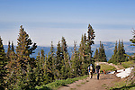Views from the Rainshadow Trail, a nature trail at Deer Park, offer some of the best views in Olmpic National Park.   Olympic Penninsula, Washington.  Outdoor Adventure. Olympic Peninsula