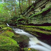 Flatbrook Waterfall, Delaware Water Gap, New Jersey