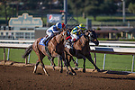 OCT 4,2014:Rich Tapestry(saddle number 2),ridden by Oliver Doleuze,wins Santa Anita Sprint Championship at Santa Anita Park in Arcadia,CA. Kazushi Ishida/ESW/CSM