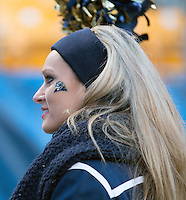 Pitt dance girl. The Miami Hurricanes defeated the Pitt Panthers 41-31 at Heinz Field, Pittsburgh, Pennsylvania on November 29, 2013.