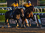May 31, 2014: Tonalist, inside, works in company with another  Christophe Clemente trainee during morning preparations for the Belmont Stakes at Belmont Park in Elmont, New York. Scott Serio/ESW/CSM