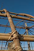 Xingu Indigenous Park, Mato Grosso State, Brazil. Aldeia Barranco Queimado. Oca under construction; detail of traditional lashing using Imbira bark.