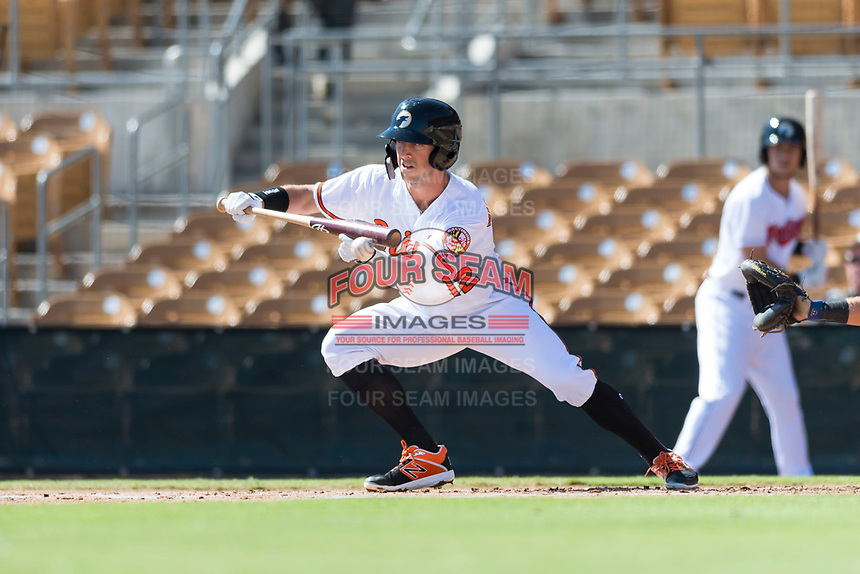 Glendale Desert Dogs third baseman Steve Wilkerson (12), of the Baltimore Orioles organization, lays down a bunt during an Arizona Fall League game against the Mesa Solar Sox at Camelback Ranch on October 15, 2018 in Glendale, Arizona. Mesa defeated Glendale 8-0. (Zachary Lucy/Four Seam Images)