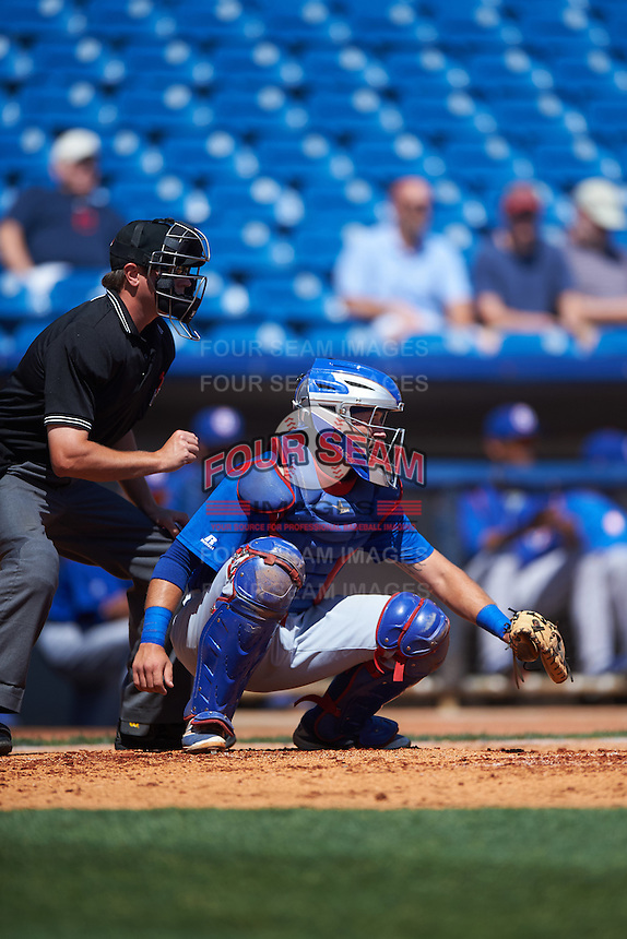 South Bend Cubs catcher P.J. Higgins (7) and umpire Derek Thomas await the pitch during a game against the Lake County Captains on July 27, 2016 at Classic Park in Eastlake, Ohio.  Lake County defeated South Bend 5-4.  (Mike Janes/Four Seam Images)