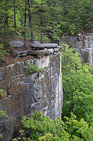 New River Gorge National Park, West Virginia.  View of the Endless Wall from Trail View Point.