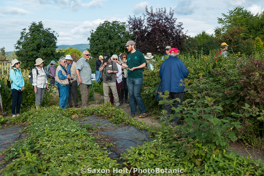 Georgeson Botanical Garden, Fairbanks Alaska, Pacific Horticulture tour Botanical Alaska 2019