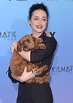 Katy Perry and her dog Butters attends The World Premiere Screening of EPIX's KATY PERRY: THE PRISMATIC WORLD TOUR held at The Theater at Ace Hotel in Los Angeles, California on March 26,2015                                                                               © 2015 Hollywood Press Agency