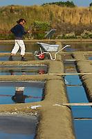 Europe/France/Pays de la Loire/44/Loire Atlantique/Guérande: Les marais salants de Guérande - Récolte de la fleur de sel  - AUTO N°: 2012- 429