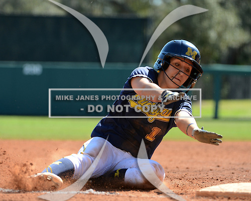 Michigan Wolverines Softball infielder Abby Ramirez (1) slides into third during a game against the Bethune-Cookman on February 9, 2014 at the USF Softball Stadium in Tampa, Florida.  Michigan defeated Bethune-Cookman 12-1.  (Copyright Mike Janes Photography)