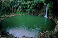 Lawai Waterfall and Pond (Fisheye), National Tropical Botanical Garden, Kauai, Hawaii, US