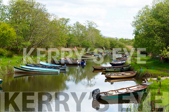 boats tied up at Ross Castle Killarney on the May bank Holiday Saturday during the lock down