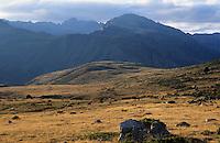 Europe/France/Languedoc-Roussillon/66/Pyrénées-Orientales/Col de Puymorens: Pâturages et montagne