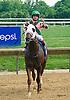 No Distortion winning at Delaware Park on 6/11/16