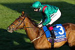 November 7, 2020 : Tarnawa, ridden by Colin Keane, wins the Longines Turf on Breeders' Cup Championship Saturday at Keeneland Race Course in Lexington, Kentucky on November 7, 2020. Candice Chavez/Breeders' Cup/Eclipse Sportswire/CSM