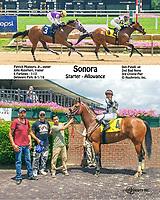 Sonora winning at Delaware Park on 8/1/18
