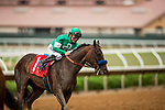 JULY 24, 2021: Mirasol gets some love from Mike Smith after the daughter of Arrogate makes her maiden debut at Del Mar Fairgrounds in Del Mar, California on July 24, 2021. Evers/Eclipse Sportswire/CSM