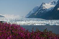Alaska Railroad Spencer Glacier