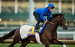October 30, 2018 : Thunder Snow (IRE), trained by Saeed bin Suroor, exercises in preparation for the Breeders' Cup Classic at Churchill Downs on October 30, 2018 in Louisville, Kentucky. Evers/ESW/CSM