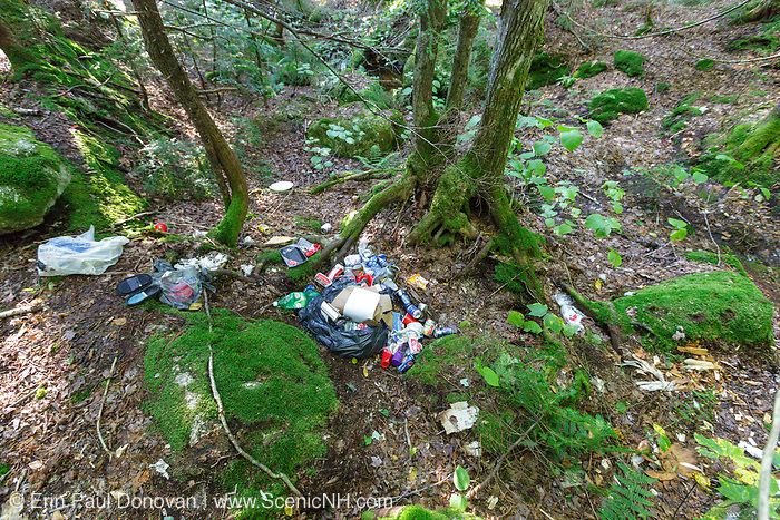 Backcountry camping impact along the Sawyer River Trail in the White Mountains, New Hampshire.