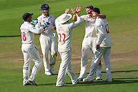 Tim van der Gugten of Glamorgan (2nd R) celebrates taking the wicket of Graham Napier during Glamorgan CCC vs Essex CCC, Specsavers County Championship Division 2 Cricket at the SSE SWALEC Stadium on 23rd May 2016