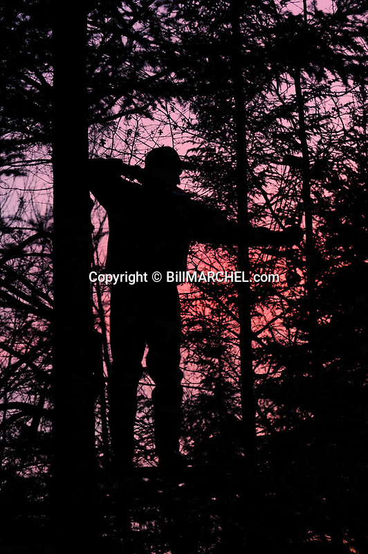 00105-044.06 Bowhunting (DIGITAL) Silhouetted archer in tree stand is at full draw.  Hunt, archery, evergreen, dawn, dusk, deer.  V7R1