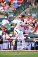 Baltimore Orioles Seth Smith (12) at bat during a Spring Training exhibition game against the Dominican Republic on March 7, 2017 at Ed Smith Stadium in Sarasota, Florida.  Baltimore defeated the Dominican Republic 5-4.  (Mike Janes/Four Seam Images)