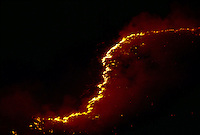 A wall of flame snakes up an Idaho ridge. Lightnening sparked it?and dozens of other blazes that roared across the bone-dry Great Basin range land set off by an electrical storm.   ..   More than a billion dollars is spent annually suppressing wildfires that burn millions of acres of western land. <br /> <br /> Though fire plays an integral role in many forest and rangeland ecosystems, decades of efforts directed at extinguishing every fire that burned on public lands have disrupted the natural fire regimes that once existed. ..   Moreover, as more communities develop and grow in areas that are adjacent to fire-prone lands in what is known as the wildland/urban interface, wildland fires pose increasing threats to people and their property.