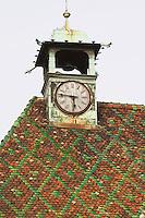 roof koifhus ancienne douane colmar alsace france